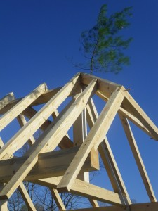 Whetting bush timber frame raising tradition